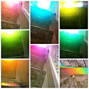 PicsArt_02-11-10.25.49